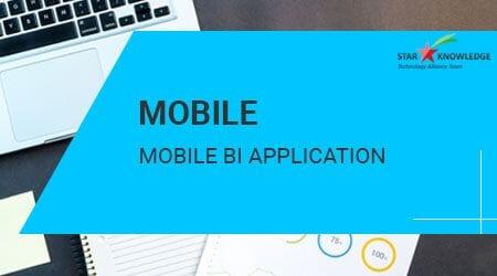 Mobile BI Application